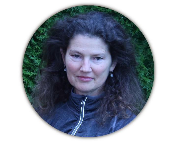Wendy Davis Artist, wendydavispaintings.com,
